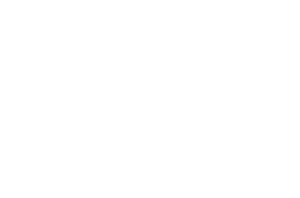 Support provided by Robert Wood Johnson Foundation